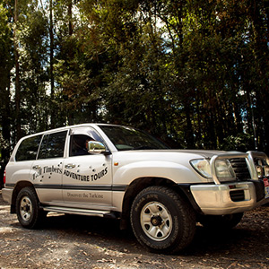 Tall Timbers 4WD Adventure Tours