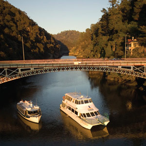 Tamar River Cruises