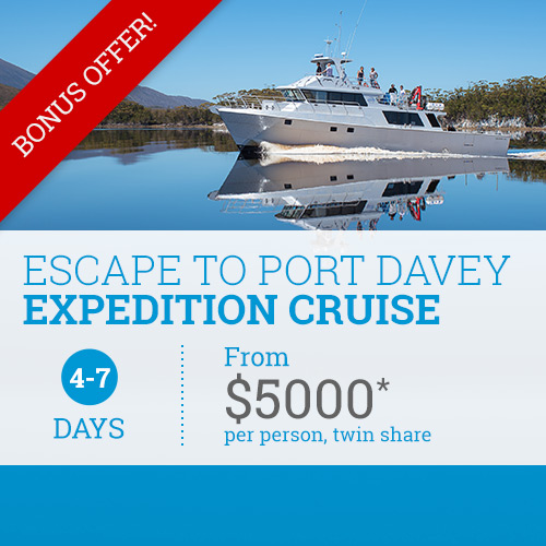 Escape to Port Davey Expedition Cruise