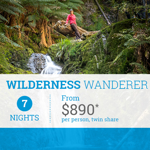 TasVacations Tasmania 7 Night Wilderness Wanderer Holiday Package